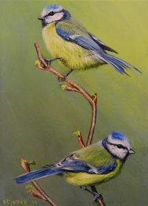 two_blue_tits_.jpg