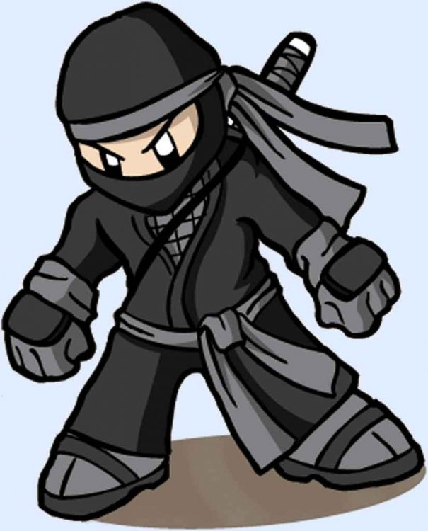 Ninja-Cool-140815.jpg