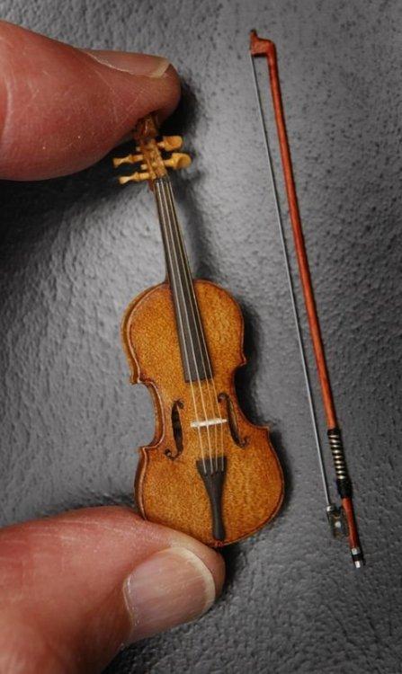 618_odd_tiny_violin.jpg