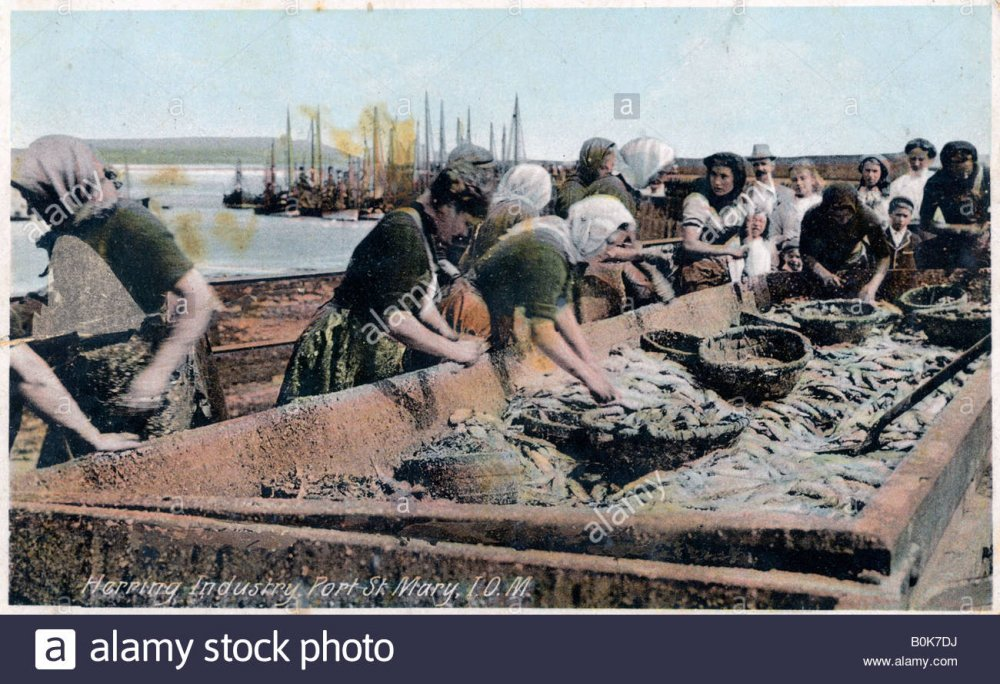 herring-industry-port-st-mary-isle-of-man-1920.thumb.jpg.537bbe85ebe81644f62e89bbfcae6ccf.jpg
